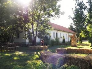 Amberg Vendégház - Zirc